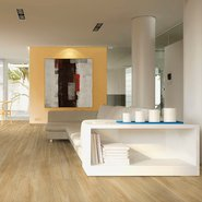 Rondine Group (Rhs) - Chalet